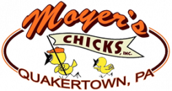 Moyers Chicks Inc.